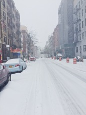 NYC in a blizzard