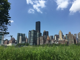 NYC Skyline from Roosevelt Island