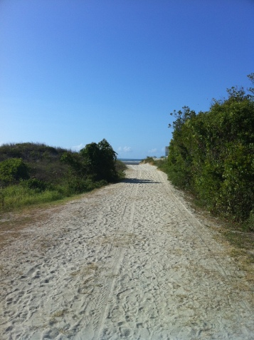 Sullivan's Island Beach Path